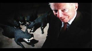 Rothschild Family Banking Dynasty and the International Bond Market