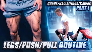 Legs/Push/Pull Routine Ep. 1: Legs | My Shredded Lifestyle