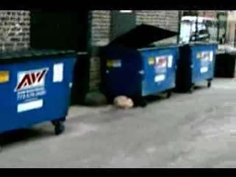 Bizarre Chicago- Beware the man eating dumpster!