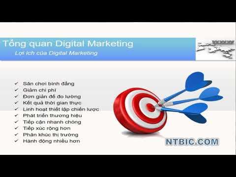 Các vấn đề cơ bản về Digital marketing p1