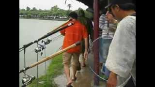 vuclip Chinh phục cá 13,24kg tại khu câu cá giải trí Quận Ký
