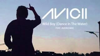 Avicii feat. Karen Marie Ørsted - Dear Boy