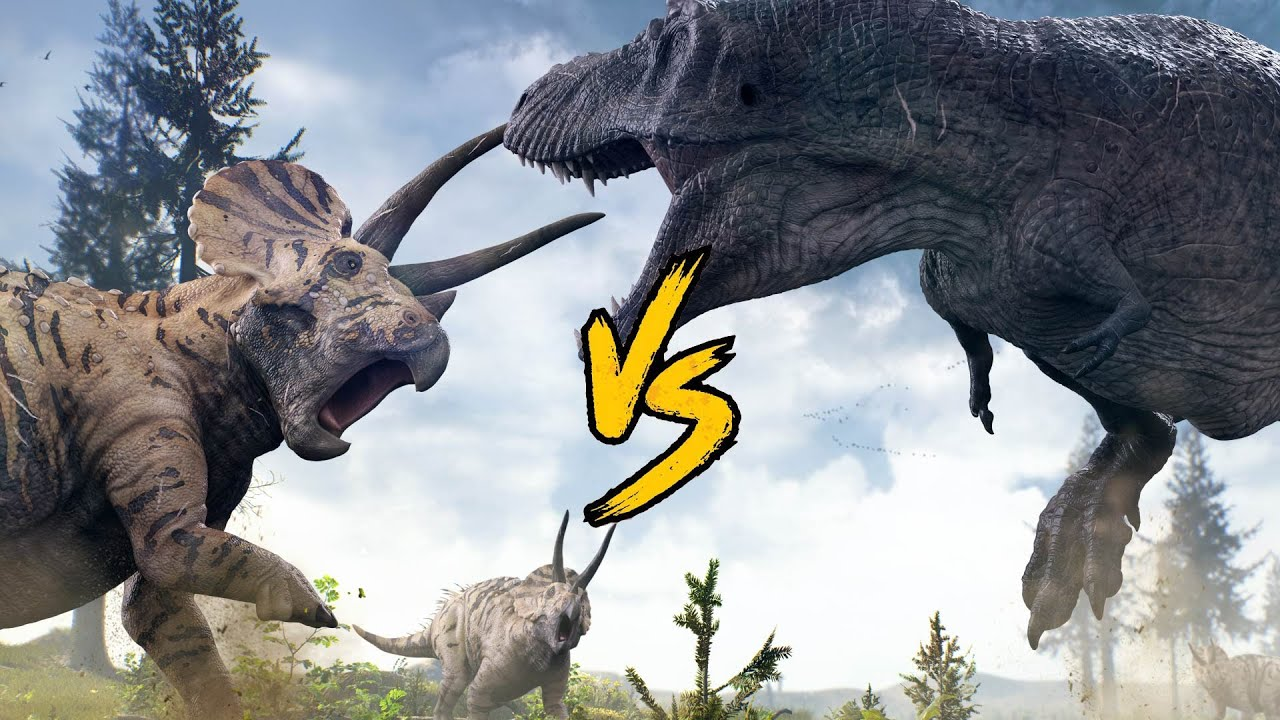 t rex vs triceratops  youtube