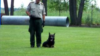 Rcmp Dog Training Centre -- Innisfail Alberta