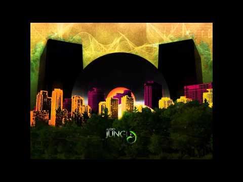 DJ Dubb ft.Gentleman & Afu-Ra - Why Cry(Remix)