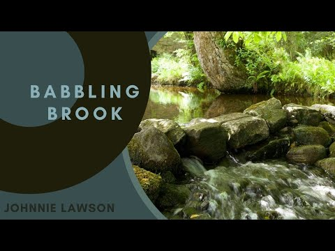Relaxation-8 Hours Nature Sounds-Ambient Birdsong-Relaxing Sound of Water-Meditation