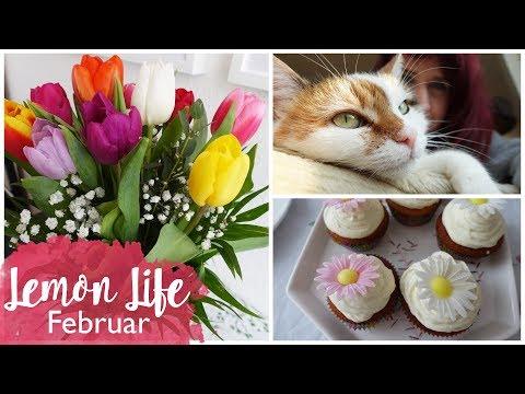 FEBRUAR VLOG | Geburtstag, Backen & Basteln | Lemon Life