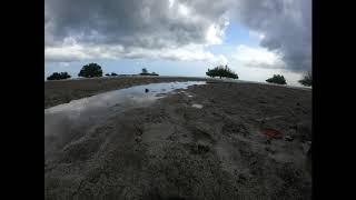 Timelapse of tides coming in Gazi Bay, Kenya