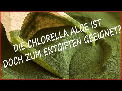 Welche Eigenschaften hat die Chlorella Alge und wie sollte Sie dosiert werden?