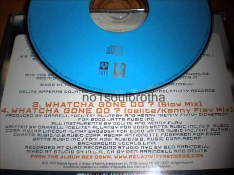 "Link ""Whatcha Gone Do?"" (Delite / Kenny Flav Mix)"