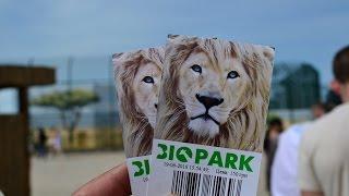 БИОПАРК ОДЕССА видео-тур(Видео-тур по новому Зоопарку (БиоПарк), который расположен в Одессе. В Био-Парке представлены следующие..., 2016-07-03T23:29:36.000Z)