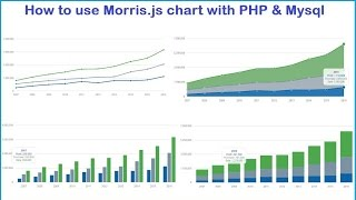 How to use Morris.js chart with PHP & Mysql