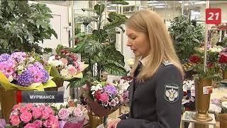 Специалисты Россельхознадзора проводят рейды по цветочным магазинам