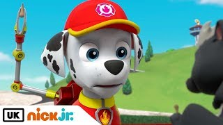 Paw Patrol | Pups Get Skunked | Nick Jr. UK