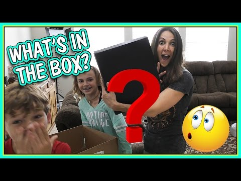 WHAT'S THE BIG SURPRISE?!? | We Are The Davises