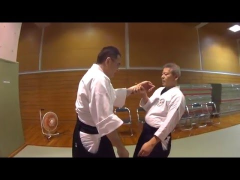 Okinawa Meikakukai Training with Maekawa Shihan March 2016