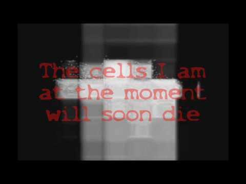 Cells - The Servant [Lyrics] FULL!