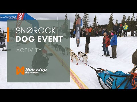 Snørock 2017 - Skijöring And Dog Mushing Event In Sjusøen Norway