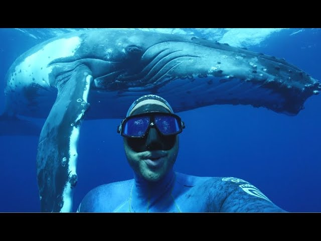 selfie-with-a-whale
