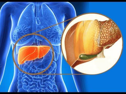 Suplimente pentru regenerarea ficatului - când sunt necesare?