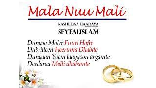 Download Nashiida. Seyfalislam :maala nuu mali Mp3
