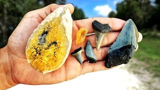 We Found Shark Teeth and Calcite Crystals on Dirt Roads in Florida | Megalodon