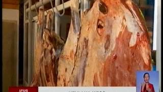 Наращивание экспорта мяса скажется на росте цен на внутреннем рынке, - М.  Махмутова
