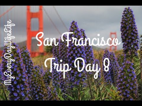 San Francisco || Twin Peaks || Trip Day 8