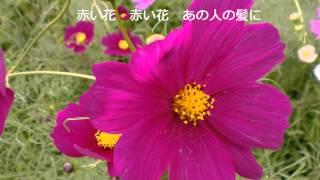 35年の歳月で日本は変わってしまった。どうしても日本人の心に響く本当...