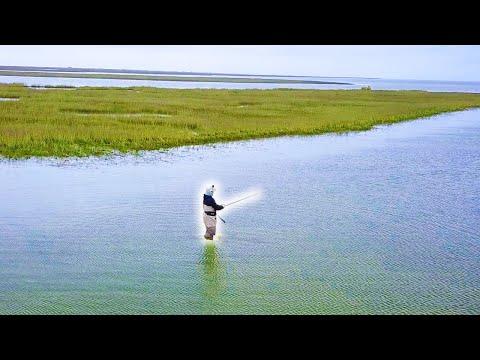 *INSANE BITE* Wade Fishing