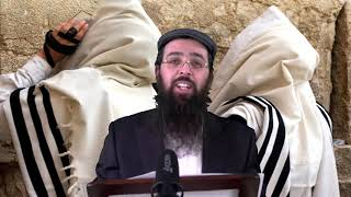 הרב יעקב בן חנן - מה זה נחשב תשובה עילאה על פגם הברית?