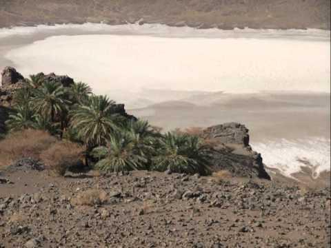 Saudi Arabia Nature