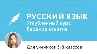 Вводное занятие по курсу «Углублённый курс по русскому языку для 5–8 классов»