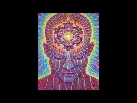 Terence Mckenna - The Secret That Can't Be Told