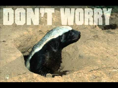 The Honey Badger Song