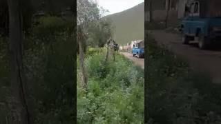 Кара кулжа району Терек айылы 😊
