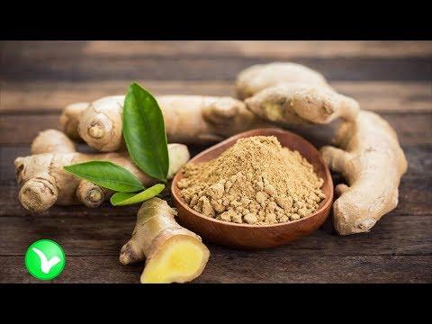 Лечебный корень имбиря. ИМБИРЬ – польза и вред для организма.