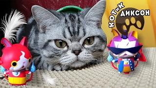 🐾😺 КОТиК ДИКСОН и кот Джибаниан -Йо Каё. Смешное видео про кошек.