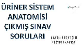 (Üriner Sistem) ANATOMİ ÇIKMIŞ SINAV SORULARI -I #vize #final (sistemler)