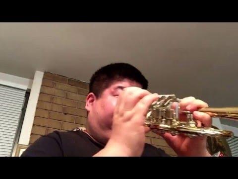8111 Scherzer Rotary Piccolo Trumpet 10