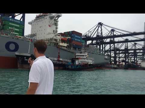 Container Port Tour & BBQ