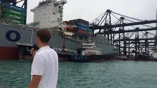 Container Port Tour & BBQ