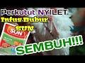 Mengobati Perkutut Nyilet Kurus Ampuh Dan Mujarab  Mp3 - Mp4 Download