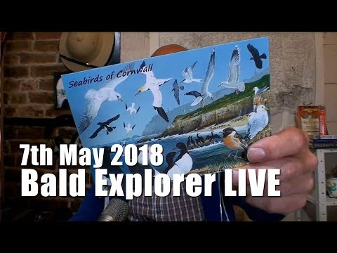 Bald Explorer   WAS LIVE   Monday 7th May 2018
