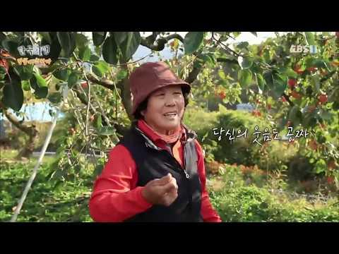 한국기행 - Korea travel_단풍에 취하다 1부 아버지는 내원골 스님_#002
