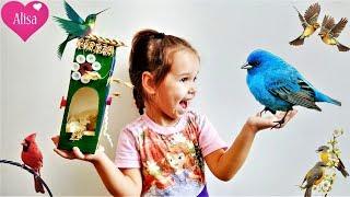 DIY КОРМУШКА для птиц Как сделать своими руками? Детский канал Little baby Алиса