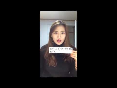 Korean Basic Expression - Ok / I Like It