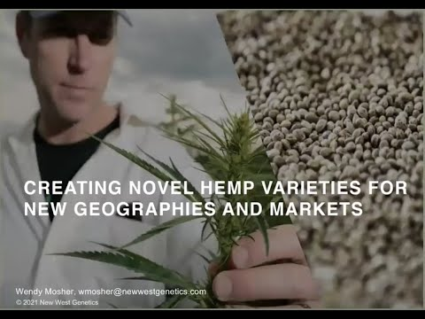 New West Genetics: Breeding the Highest Quality, Most Reliable Certified Hemp Seed