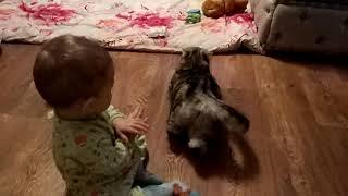 Малыш дёргает кошку за хвост, а она терпит