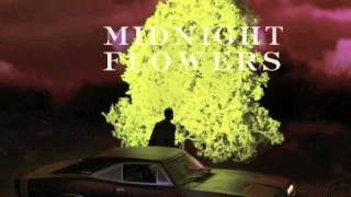 Long Black Cloud // The Dig // Midnight Flowers Unreleased Track (2012)